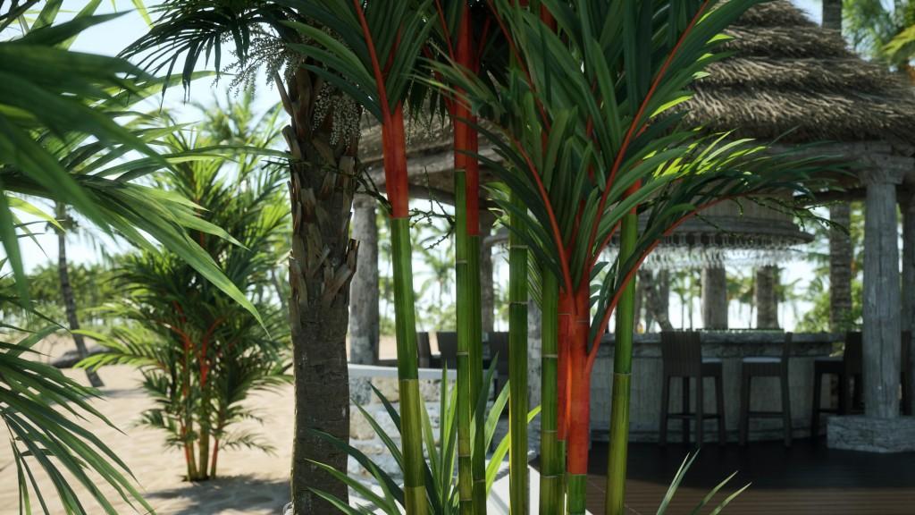 Laubwerk-3D Plants for CG Artists - SEE-IT-3D
